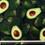 FOOD-C9488-GREEN